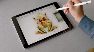 WWDC 2018 In Photos: Apple Announces New iPad